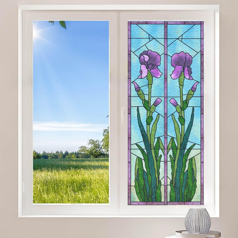Iris violettes